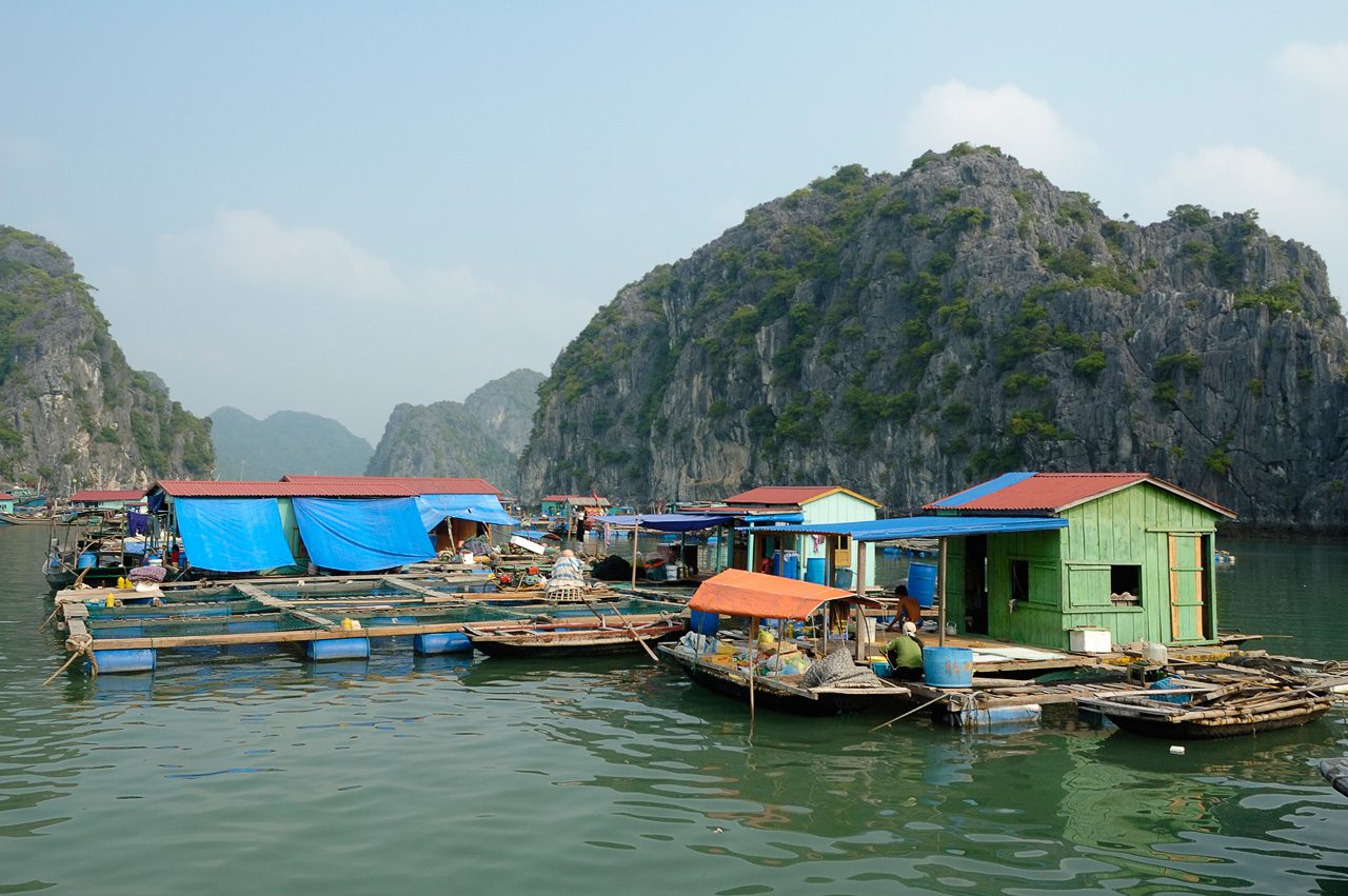 Ha Long Bay (15)