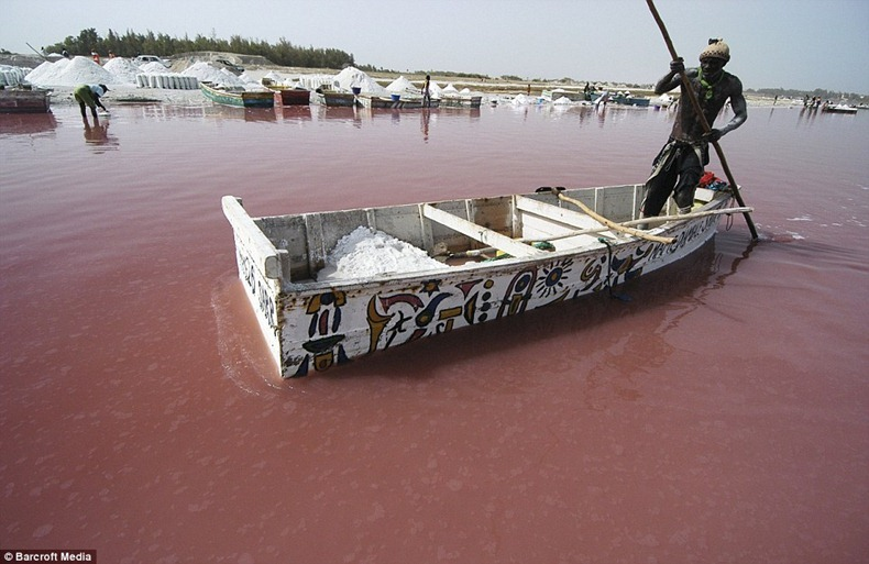 Lake Retba (1)