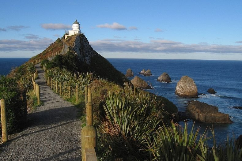 Nugget Point Lighthouse New Zealand  (4)