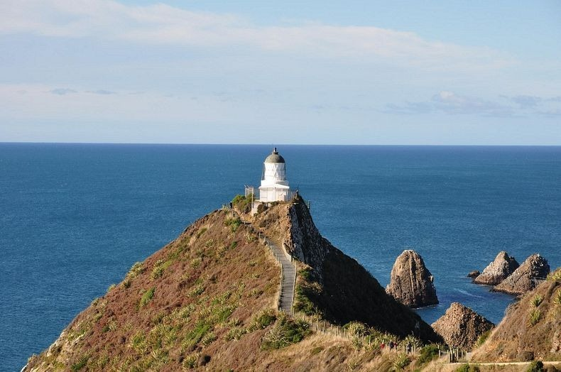 Nugget Point Lighthouse New Zealand  (5)