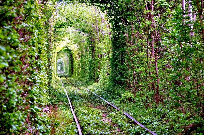 tunnel-of-love (4)