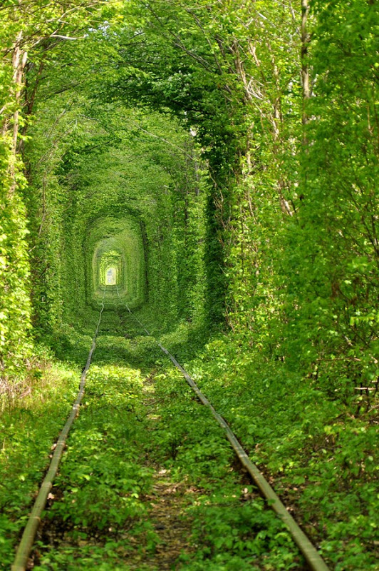 tunnel-of-love (6)