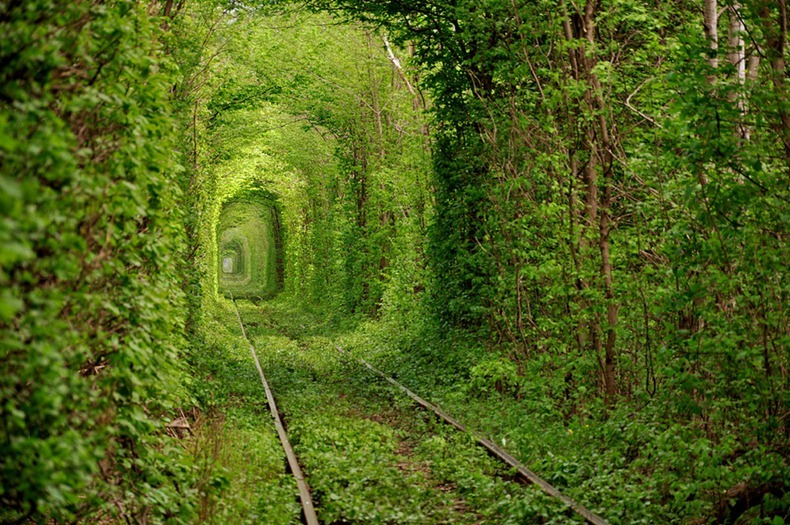 tunnel-of-love (7)