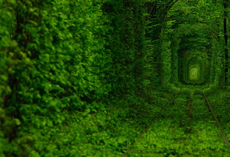 tunnel-of-love (8)