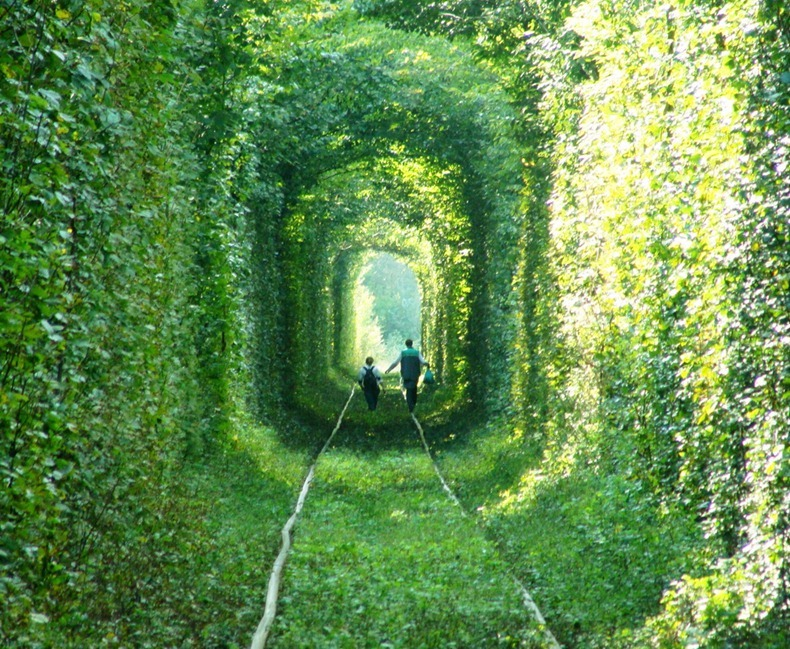 tunnel-of-love (9)