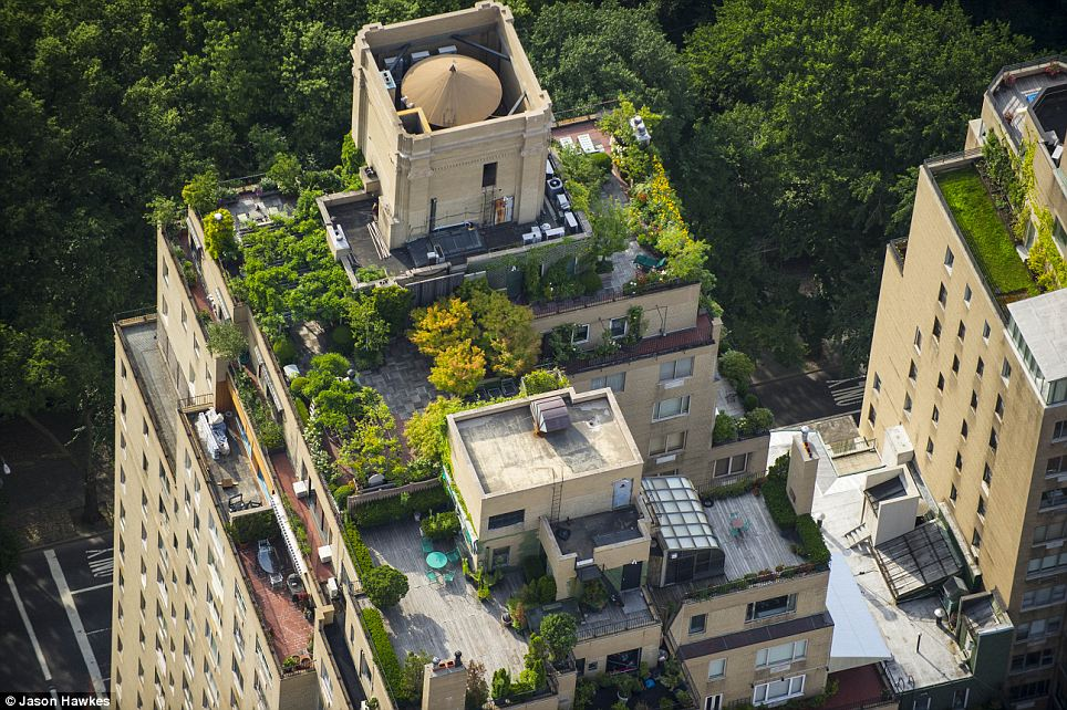 amazing aerial shots of New York taken as he dangled out of a helicopter (9)