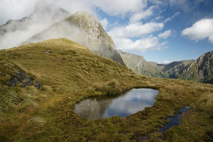 Strait of Milford Sound in New Zealand (7)