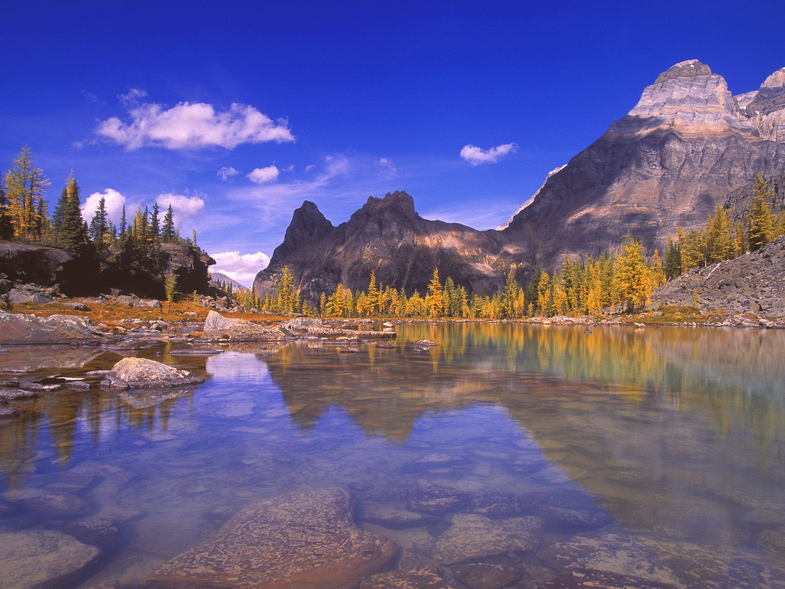 Yoho_National_Park_British_Columbia_Canada
