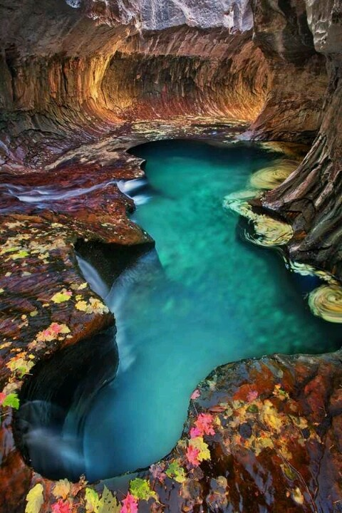 Zion National Park12