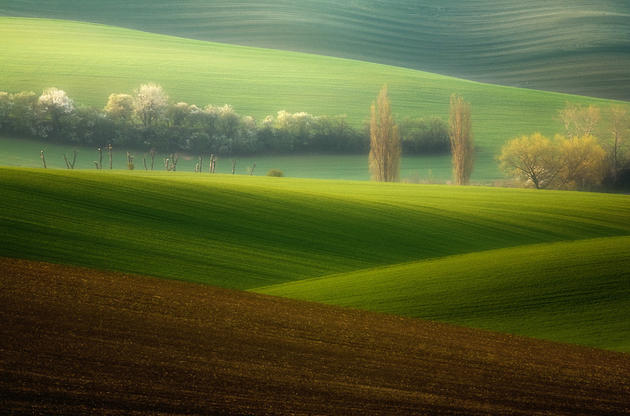 beautiful-moravia (1)