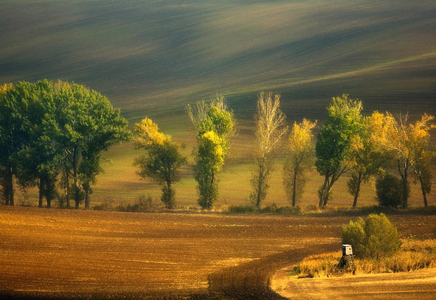 beautiful-moravia (12)