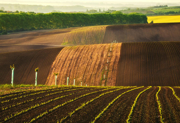 beautiful-moravia (13)