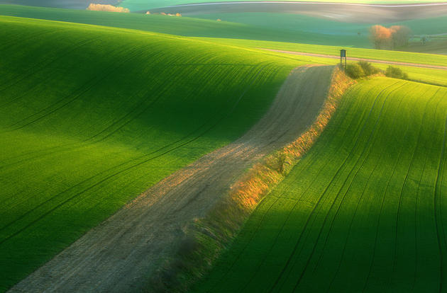 beautiful-moravia (2)