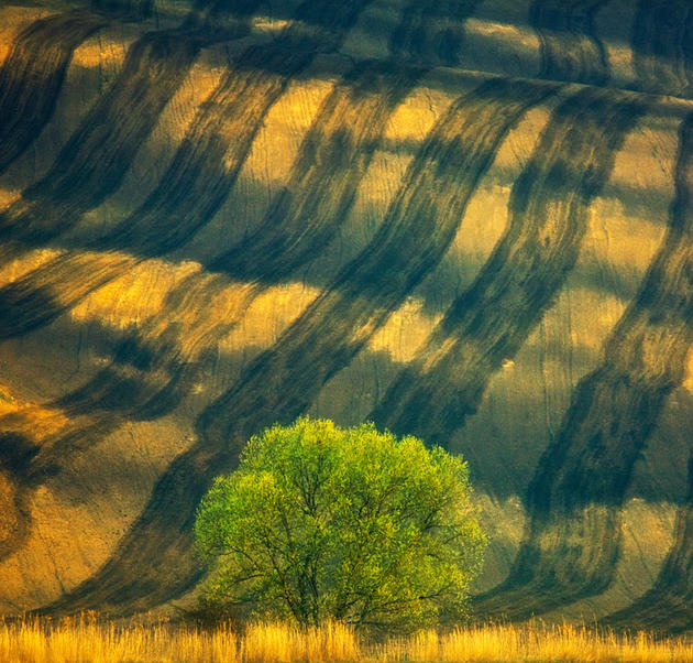 beautiful-moravia (3)