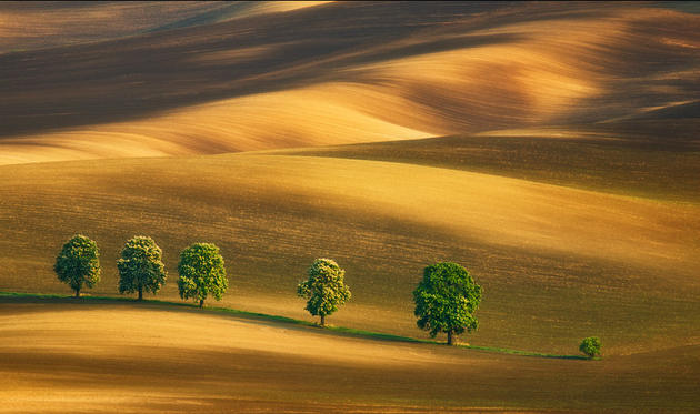 beautiful-moravia (5)