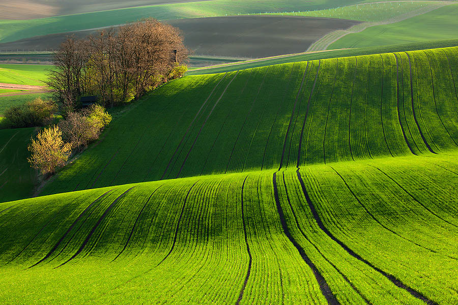 green-fields-of-moravia-st1le-1