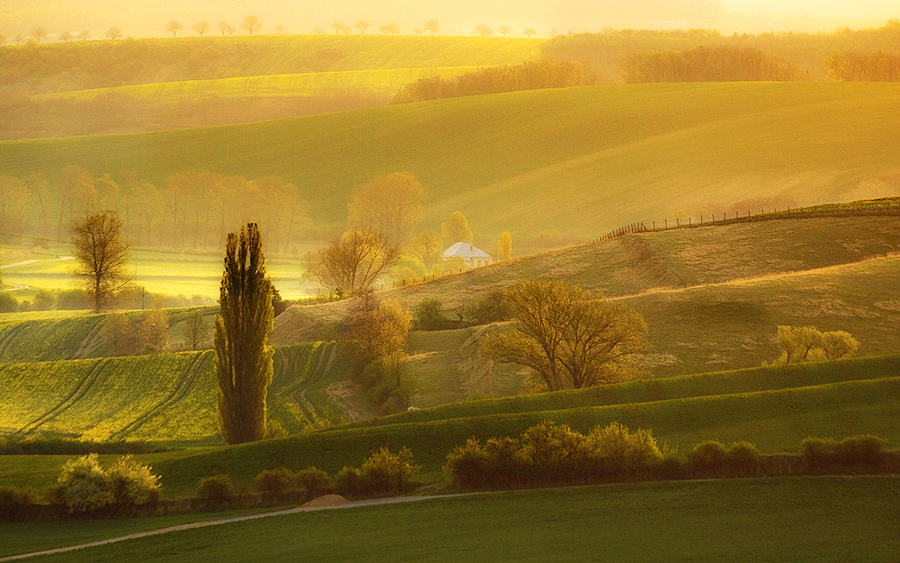 green-fields-of-moravia-st1le-10