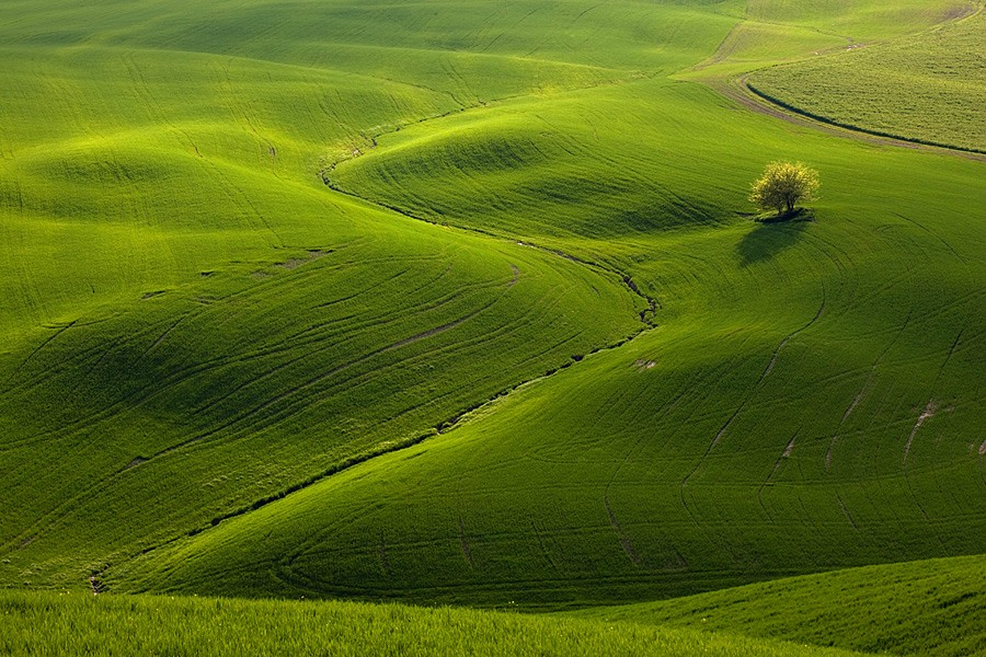 green-fields-of-moravia-st1le-12